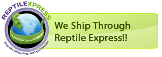 Our Preferred Shipping Company